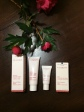 Clarins gift bag
